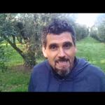 Niedrigen Saeure, weil es mit gesunden un frischen oliven bei der pressung…..